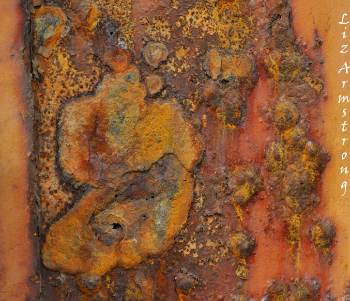2010-11 A map of rust