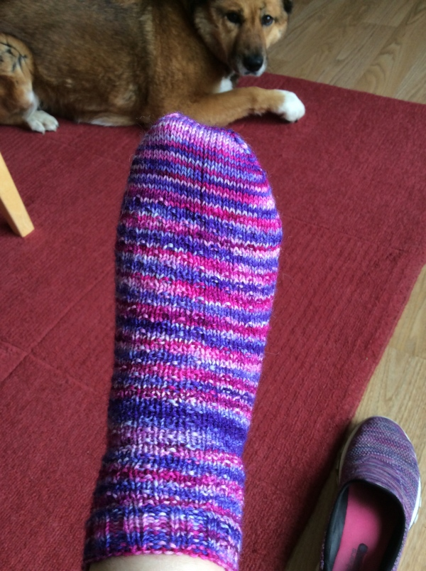 Hermione's everyday sock