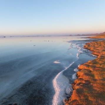 2018 Print Salt flat shoreline